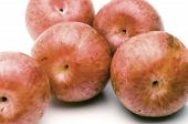 stock photo of dinosaur-eggs  - pluots hybrid fruit plum apricot sometimes called dinosaur eggs - JPG