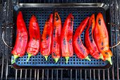 image of braai  - Chillies getting ready to be grilled on the grill - JPG