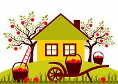 pic of hand-barrow  - vector hand barrow and baskets of apples in garden - JPG