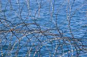 Closeup Of Razor-wire Fence With Water Background