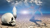 stock photo of wander  - Wanderer on dried desert mud with human skull in foreground - JPG