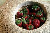 Summer Fruit Series - Strawberrys  poster