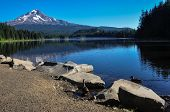 foto of trillium  - Trillium Lake Early Morning With Mount Hood, Oregon, Usa