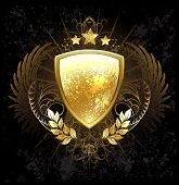 image of shield  - golden shield decorated with a pattern wings stars and golden laurel branches on a dark background - JPG