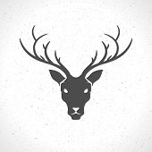 foto of deer horn  - Deer head and horns face logo emblem template for business or t - JPG
