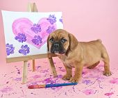 picture of paw  - Cute puppy standing with a painting of a heart with paw prints going through it - JPG