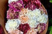 stock photo of fragrance  - switzerland - JPG