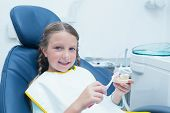 image of false teeth  - Little girl learning how to brush teeth in the dentists chair - JPG