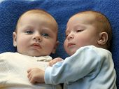 image of baby twins  - two cute baby boys twin brothers interacting - JPG