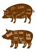 stock photo of pig  - Meaty brown pigs with various outlines of different butchery cuts for retail pork and butcher shop design - JPG
