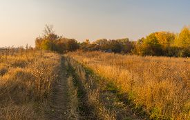 picture of hamlet  - Earth road to abandoned hamlet in Sumskaya oblast Ukraine - JPG